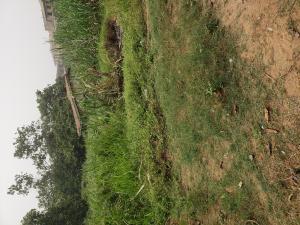 Residential Land Land for sale Besides Morgan estate ojodu berger  Unity estate Ojodu Lagos