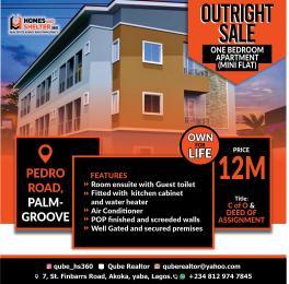 Mini flat for sale Pedro Road Shomolu Lagos