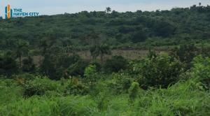 Mixed   Use Land Land for sale Odelewu Epe Epe Road Epe Lagos