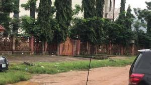 Residential Land for sale Off Yakubu Gowon Crescent Asokoro Abuja