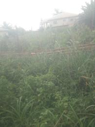 Mixed   Use Land Land for sale This land is located along Ugbolu-Illah-Abuja federal road in Ugbolu town. Oshimili North Delta