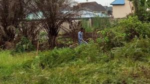 Residential Land Land for sale Rose Garden Okokomaiko Ojo Lagos