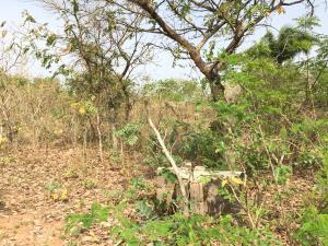 Mixed   Use Land Land for sale Sabo Oke-Ero Kwara