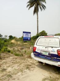 Serviced Residential Land Land for sale Ilamija Community Epe Lagos
