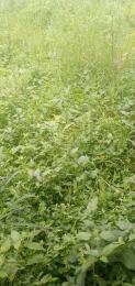 Mixed   Use Land Land for sale Along Prosco Road, Kpansia Yenagoa Yenegoa Bayelsa