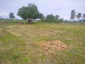 Commercial Land for sale Alakuko Area Alagbado Abule Egba Lagos
