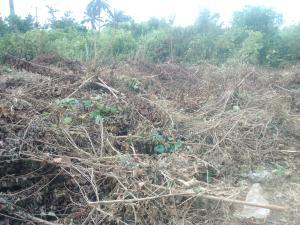 Land for sale Ago Baba Rd Yewa South Yewa Ogun