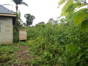 Residential Land for sale Store, Adjacent Adofure Prayer Centre Akure Ondo