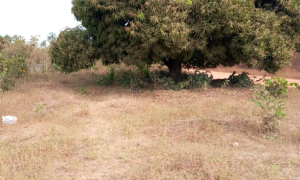 Commercial Land Land for sale Along Old Enugu/onitsha Road Down To Ndiora Community Awka South Anambra
