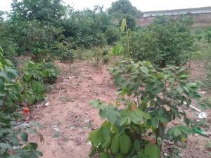 Residential Land Land for sale Oba ile housing estate, Akure Akure Ondo