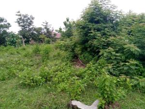 Residential Land Land for sale Agbale Area Ede North Osun