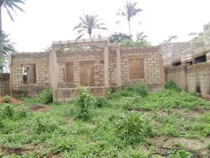 4 bedroom Land for sale Adeogun Area close to IITA fence behind U.I laninba Ajibode Ibadan Oyo
