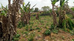 Commercial Land Land for sale Obafemi Owode Ogun
