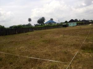 Residential Land Land for sale Ifa Ikot Okpon Uyo Akwa Ibom