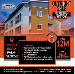1 bedroom Blocks of Flats for sale Off Pedro Road Shomolu Lagos