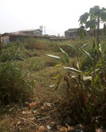 Residential Land Land for sale Ekoro road Abule Egba Abule Egba Lagos