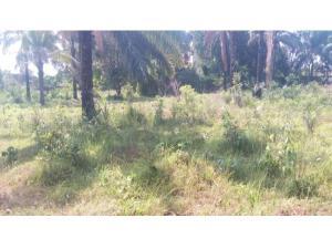 Commercial Land Land for sale PRODA Quarters Emene Enugu Enugu