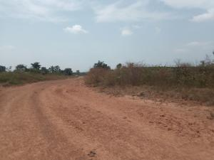 Land for sale Federation Layout, Emene, close to NNPC Depot Enugu Enugu