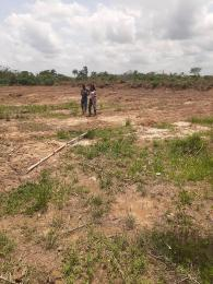 Residential Land for sale Emperor Pillars Festac With Instant Allocation Amuwo Odofin Amuwo Odofin Lagos