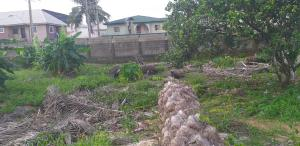 Residential Land Land for rent Abijo Destiny Estate  Majek Sangotedo Lagos