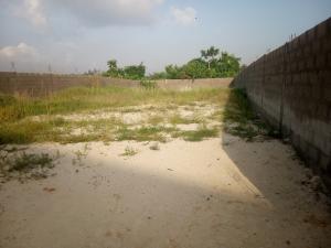 Mixed   Use Land for sale Behind Chevron Estate Satellite Town Amuwo Odofin Lagos