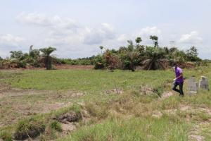 Mixed   Use Land Land for sale OKI - OLODO Iwo Rd Ibadan Oyo