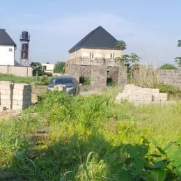 Residential Land for sale Off Iba Junction Lasu Road Iba Ojo Lagos