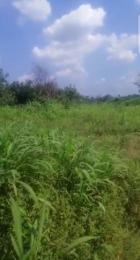 Mixed   Use Land Land for sale NAZE, behind finca microfinance bank Estate, Owerri. Owerri Imo