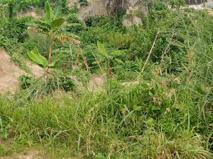 Residential Land Land for sale Ikot Anwatim community off NNPC DEPO  Calabar Cross River