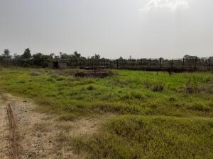 Residential Land Land for sale ibeju lekki Eleko Ibeju-Lekki Lagos