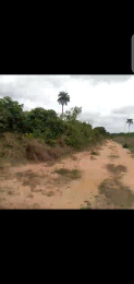 Residential Land Land for sale Around PH road, Avu Amafor axis, Owerri, IMO state Owerri Imo