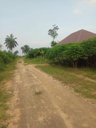 Residential Land Land for sale Royal Paradise Estate, Elimgbu Obio-Akpor Rivers