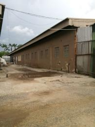 Commercial Property for rent Surulere street  Ogba Industrial Ogba Lagos