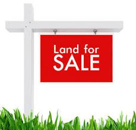 Mixed   Use Land Land for sale Eleko Eleko Ibeju-Lekki Lagos