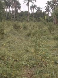 Industrial Land Land for sale Fiditi Junction, Along Oyo - Ibadan Expressway, Fiditi. Afijio Oyo