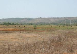 Mixed   Use Land for sale Dangote Refinery, Itamarun, Eloko Ibeju Town Free Trade Zone Ibeju-Lekki Lagos