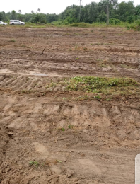 Land for sale Ibusa , Opposite Admiralty University Asaba Delta
