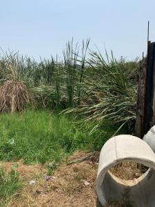 Mixed   Use Land for sale In Front Of Chivita Ajao Estate Isolo Lagos
