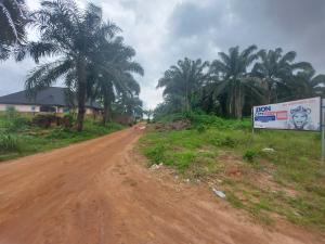 Mixed   Use Land for sale Abraka Road Central Edo